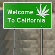 Why California's Legal Pot Industry Is Struggling Against The Black Market!